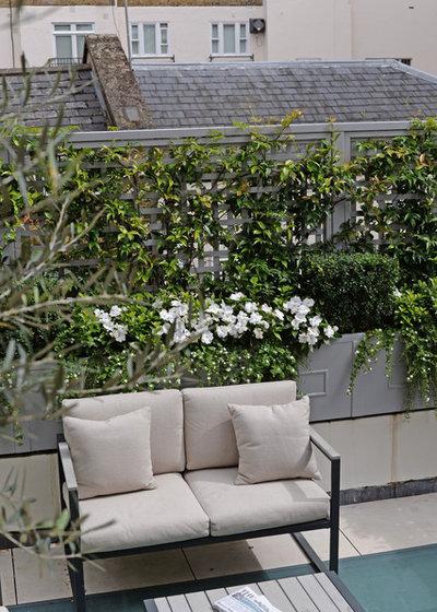 Traditional Terrace & Balcony by The Garden Trellis Company