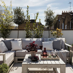 Transitional Terrace