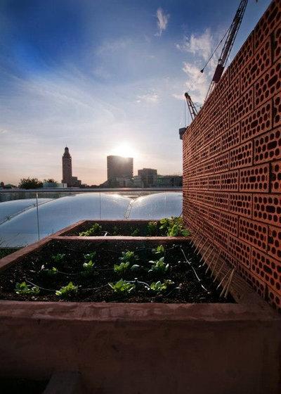 Modern Deck by Urban Roof Gardens