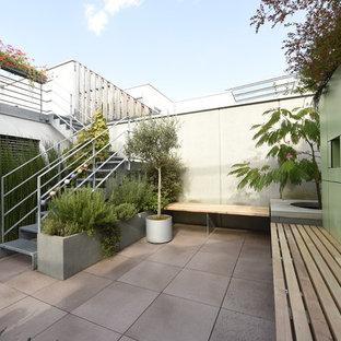 Mittelgroße, Unbedeckte Moderne Terrasse hinter dem Haus mit Kübelpflanzen in Stuttgart