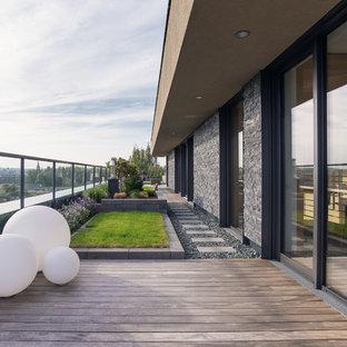Große Moderne Terrasse mit Kübelpflanzen in Dresden
