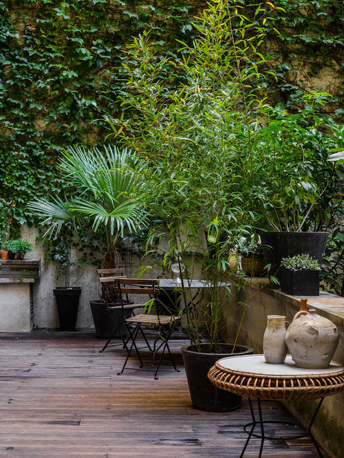 Contemporary Courtyard Covering : Mid-sized contemporary courtyard patio in Paris with a container ...