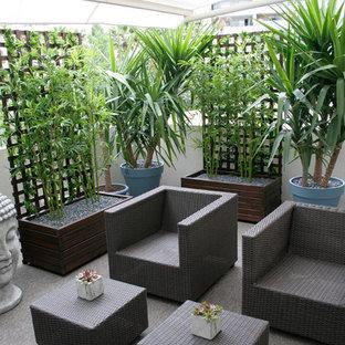 Ispirazione per un patio o portico etnico dietro casa e di medie dimensioni con un giardino in vaso e un parasole