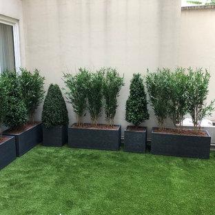 Foto di un piccolo patio o portico country in cortile con un giardino in vaso e nessuna copertura