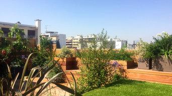 Aménagement paysager d'un rooftop à Paris...