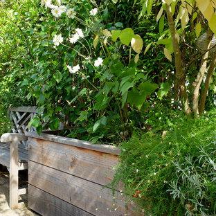 Idee per un grande patio o portico shabby-chic style con un giardino in vaso e una pergola
