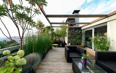 Balconi e Terrazzi: Come Creare il Set Perfetto per Piante Protagoniste