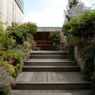 Réalisation d'une terrasse avec des plantes en pots arrière design de taille moyenne.