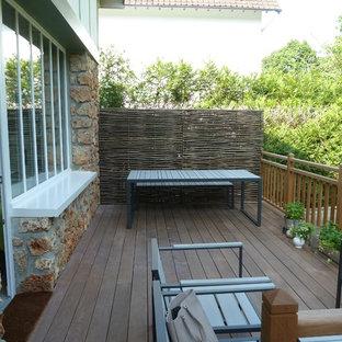 Cette photo montre une terrasse arrière nature avec aucune couverture.