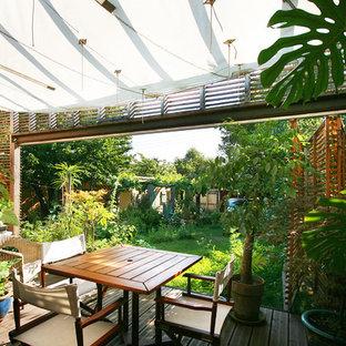 Aménagement d'une petite terrasse avec des plantes en pots arrière contemporaine avec une pergola.