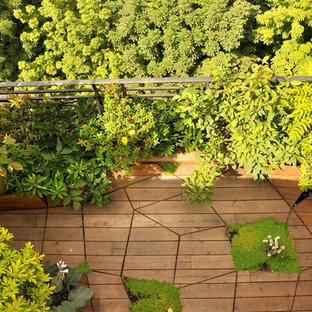 Création d'une terrasse « en mouvement » et mur végétalisé