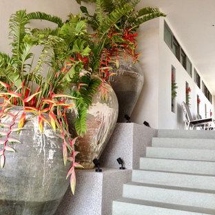 Idee per un ampio patio o portico etnico con un giardino in vaso, graniglia di granito e un tetto a sbalzo