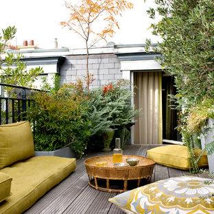 Exemple d'une terrasse avec des plantes en pots exotique.