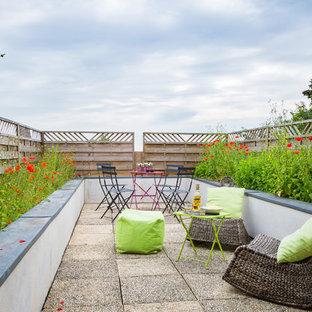 Idées déco pour une terrasse avec des plantes en pots contemporaine avec des pavés en béton et aucune couverture.