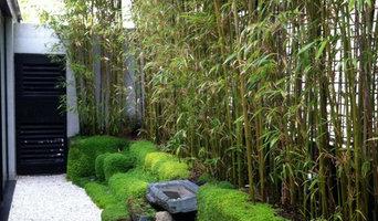 jardin de bambous