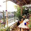 Grüner wird's nicht – als auf dieser Pariser Dachterrasse