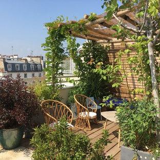 Esempio di una grande terrazza minimalista sul tetto con un giardino in vaso e una pergola