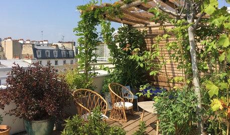 Avant/Après : Un toit-terrasse de 80 m² avec vue sur Montmartre