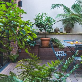 Cette image montre une terrasse avec des plantes en pots arrière design.