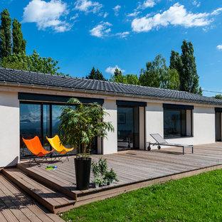 Idées déco pour une grande terrasse avec des plantes en pots arrière contemporaine avec aucune couverture.