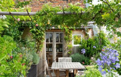 Sind das die Traum-Terrassen der Houzz-User?