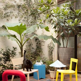 Réalisation d'un mur végétal de terrasse design.