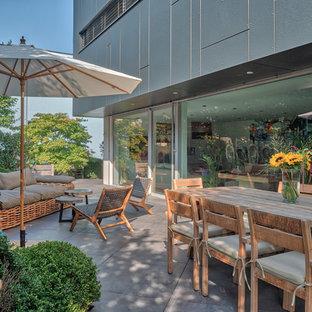 Cette image montre une terrasse arrière design avec des pavés en béton et aucune couverture.