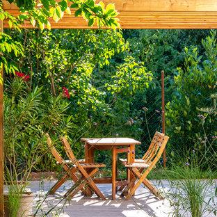 Cette photo montre une terrasse arrière tendance de taille moyenne avec une pergola.