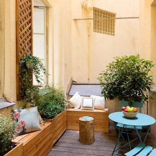 Cette image montre une terrasse avec des plantes en pots nordique avec une cour.