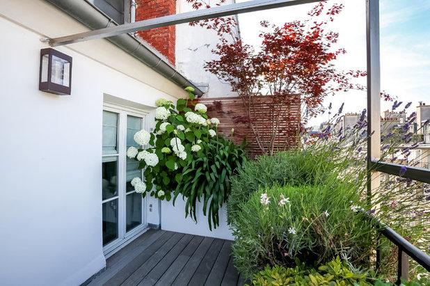 vorher nachher ein balkon ber den d chern von paris bl ht auf. Black Bedroom Furniture Sets. Home Design Ideas