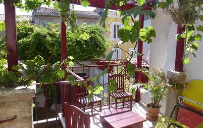 Ricavare un terrazzo gli esperti ci svelano come fare for Uva fragola in vaso