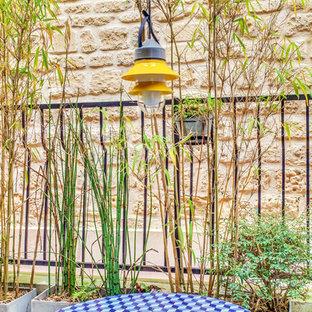 Foto di un piccolo patio o portico contemporaneo davanti casa con un giardino in vaso, piastrelle e una pergola