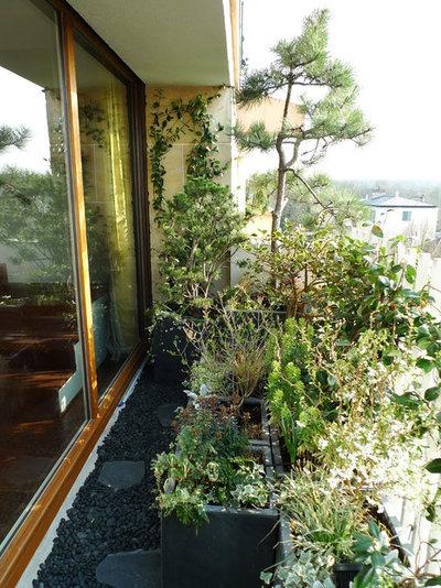 Balconi e terrazzi come creare il set perfetto per piante - Terrazzi arredati e fioriti ...