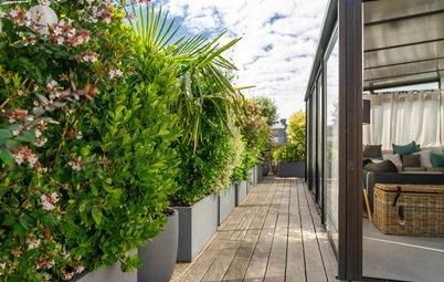 Avant/Après : La terrasse d'un penthouse de Boulogne prend vie
