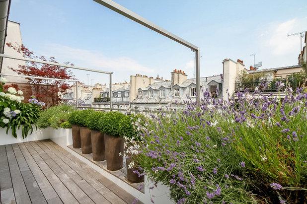 Contemporain Terrasse en Bois by Terrasses des Oliviers - Paysagiste Paris