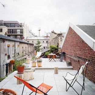 Cette image montre une terrasse avec des plantes en pots urbaine.