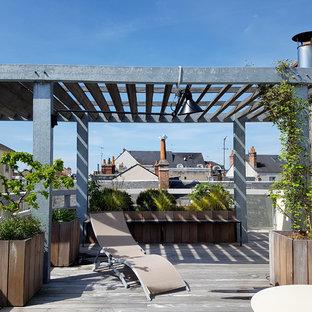Esempio di una terrazza industriale sul tetto con un giardino in vaso e una pergola