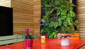 vue sur le cadre support de plantes grimpantes