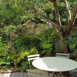 Immagine di un patio o portico etnico di medie dimensioni e in cortile con un giardino in vaso, pedane e nessuna copertura