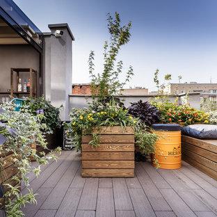 Foto di una piccola terrazza industriale sul tetto con un giardino in vaso e un tetto a sbalzo