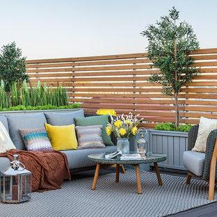 Свежая идея для дизайна: терраса на крыше в современном стиле с растениями в контейнерах без защиты от солнца - отличное фото интерьера