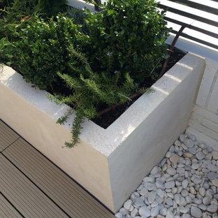 Ispirazione per un piccolo giardino contemporaneo sul tetto con un giardino in vaso