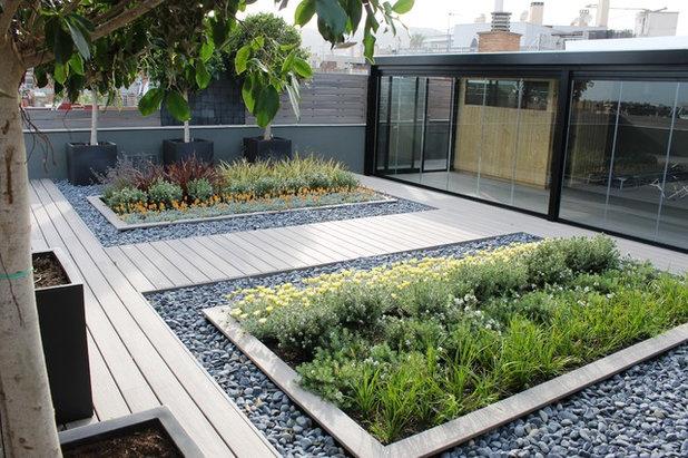 Contemporáneo Terraza y balcón by Arborètum
