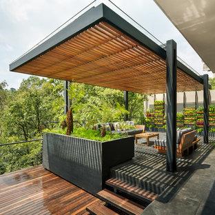 Idéer för funkis terrasser, med en vertikal trädgård och en pergola