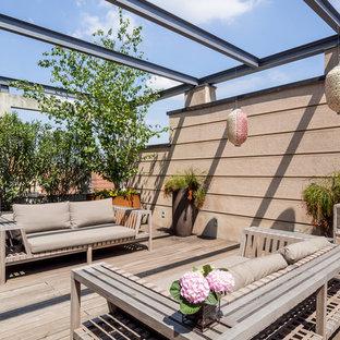 Esempio di una terrazza design sul tetto con un giardino in vaso e nessuna copertura