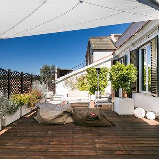 Ispirazione per una terrazza contemporanea con un giardino in vaso e un parasole
