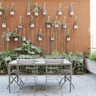 Inspiration för små moderna terrasser längs med huset, med en vertikal trädgård