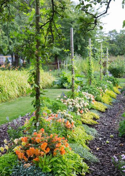 Klassisk Trädgård by Plan&Planta