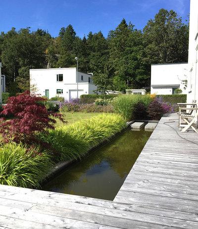 Modern Trädgård by Zetas Designavdelning  I  Zetas Trädgård