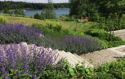 Fråga experten: Hur odlar man på bästa sätt i Stockholms skärgård?
